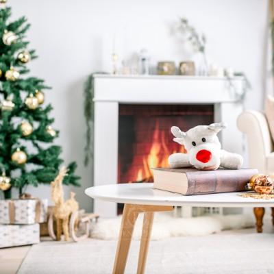 Mini-séances Noël 2020